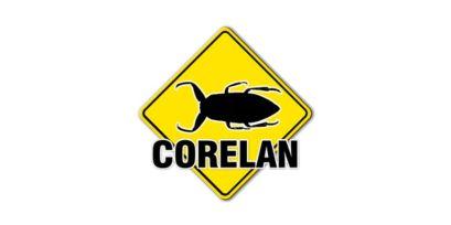 corelan2